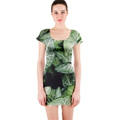 Green Leaves Nature Pattern Plant Short Sleeve Bodycon Dress
