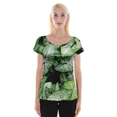 Green Leaves Nature Pattern Plant Women s Cap Sleeve Top