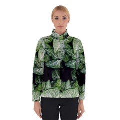 Green Leaves Nature Pattern Plant Winterwear