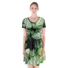 Green Leaves Nature Pattern Plant Short Sleeve V Neck Flare Dress