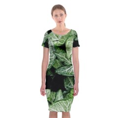 Green Leaves Nature Pattern Plant Classic Short Sleeve Midi Dress