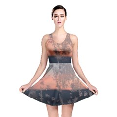 Hardest Frost Winter Cold Frozen Reversible Skater Dress