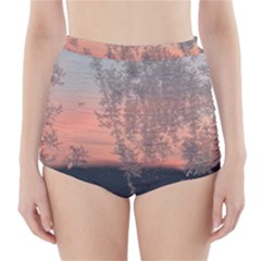 Hardest Frost Winter Cold Frozen High-Waisted Bikini Bottoms