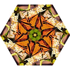 Monarch Butterfly Nature Orange Mini Folding Umbrellas