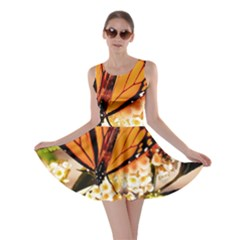 Monarch Butterfly Nature Orange Skater Dress