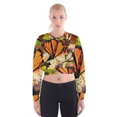 Monarch Butterfly Nature Orange Women s Cropped Sweatshirt