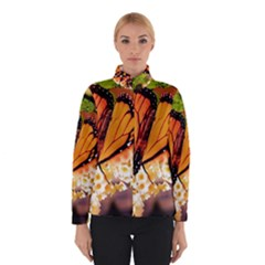Monarch Butterfly Nature Orange Winterwear
