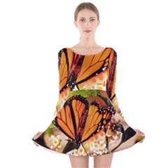 Monarch Butterfly Nature Orange Long Sleeve Velvet Skater Dress