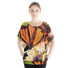 Monarch Butterfly Nature Orange Blouse