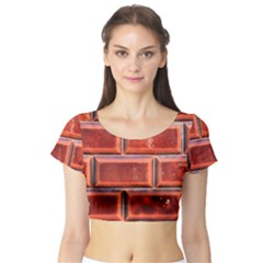 Portugal Ceramic Tiles Wall Short Sleeve Crop Top (tight Fit)
