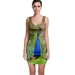 Peacock Animal Photography Beautiful Sleeveless Bodycon Dress