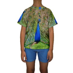 Peacock Animal Photography Beautiful Kids  Short Sleeve Swimwear