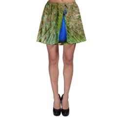 Peacock Animal Photography Beautiful Skater Skirt