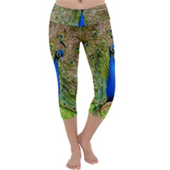 Peacock Animal Photography Beautiful Capri Yoga Leggings