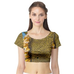 Sunflower Bright Close Up Color Disk Florets Short Sleeve Crop Top (tight Fit)