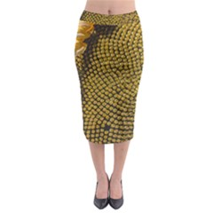 Sunflower Bright Close Up Color Disk Florets Midi Pencil Skirt
