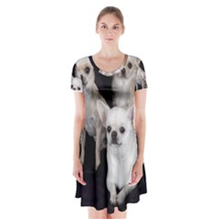 3 Chihuahuas Short Sleeve V-neck Flare Dress