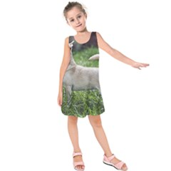 Chihuahua Full Kids  Sleeveless Dress