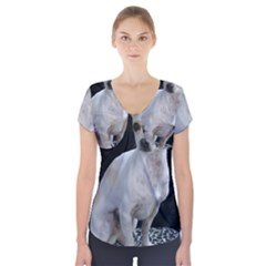 Chihuahua Sitting Short Sleeve Front Detail Top