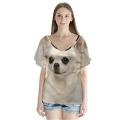 Chihuahua Flutter Sleeve Top