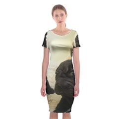 Sharpei Pups Black And Creme Classic Short Sleeve Midi Dress