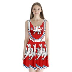 Coat of Arms of Crimea Split Back Mini Dress