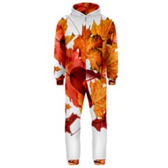 Autumn Leaves Leaf Transparent Hooded Jumpsuit (men)