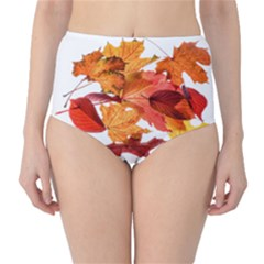 Autumn Leaves Leaf Transparent High Waist Bikini Bottoms
