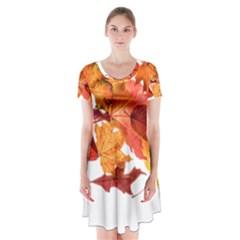 Autumn Leaves Leaf Transparent Short Sleeve V-neck Flare Dress