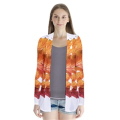 Autumn Leaves Leaf Transparent Cardigans