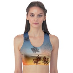 Hardest Frost Winter Cold Frozen Sports Bra