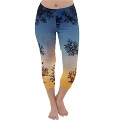 Hardest Frost Winter Cold Frozen Capri Winter Leggings