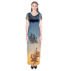 Hardest Frost Winter Cold Frozen Short Sleeve Maxi Dress