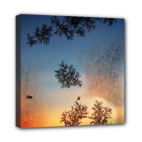 Hardest Frost Winter Cold Frozen Mini Canvas 8  X 8
