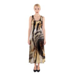 Royal Tiger National Park Sleeveless Maxi Dress
