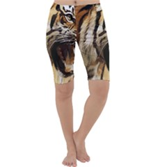 Royal Tiger National Park Cropped Leggings