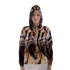 Royal Tiger National Park Hooded Wind Breaker (women)