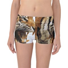 Royal Tiger National Park Boyleg Bikini Bottoms