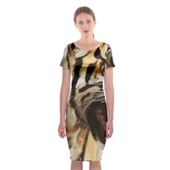 Royal Tiger National Park Classic Short Sleeve Midi Dress
