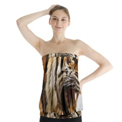 Royal Tiger National Park Strapless Top