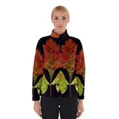 Autumn Beauty Winterwear