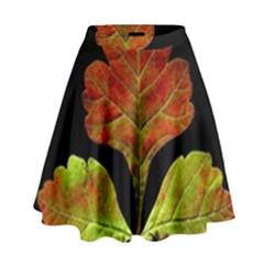 Autumn Beauty High Waist Skirt