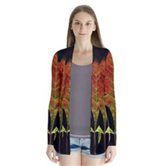 Autumn Beauty Cardigans