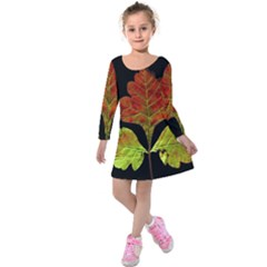 Autumn Beauty Kids  Long Sleeve Velvet Dress