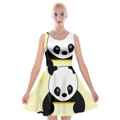 First Birthday Panda Card Velvet Skater Dress