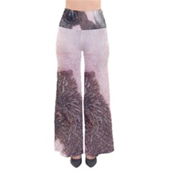 Chinese Crested Eyes Pants