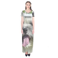 Coton De Tulear Short Sleeve Maxi Dress