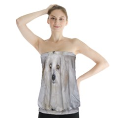 Coton Laying Strapless Top