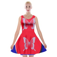 Blue Background Butterflies Frame Velvet Skater Dress
