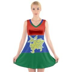 Flag of Myanmar Kayah State V-Neck Sleeveless Skater Dress